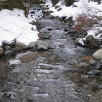 遠敷川の渓流