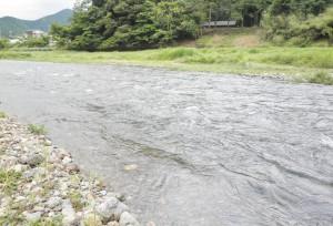 増水の南川