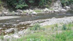 南川の鮎釣り