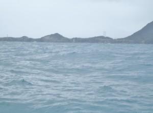 若狭湾の船釣り